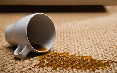 Carpet Cleaning Livermore, CA